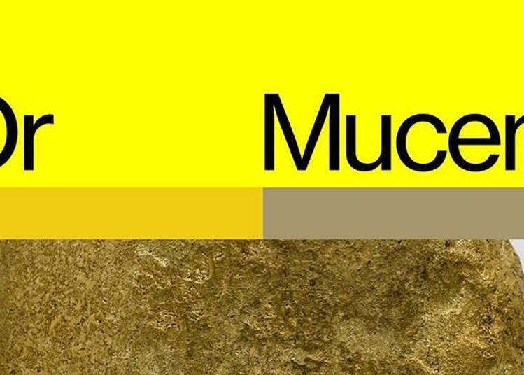 Portes ouvertes de l'exposition « Or » au Mucem à Marseille