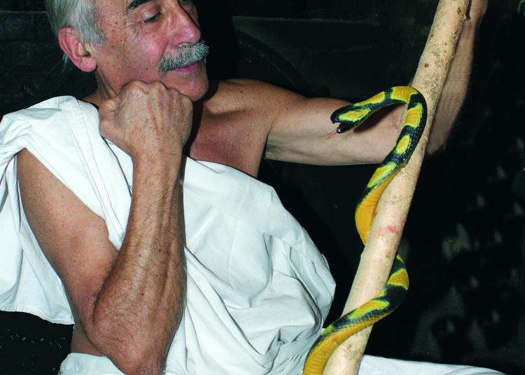 Pour qui sont ces serpents qui sifflent sur nos têtes ? à Pont de Ruan