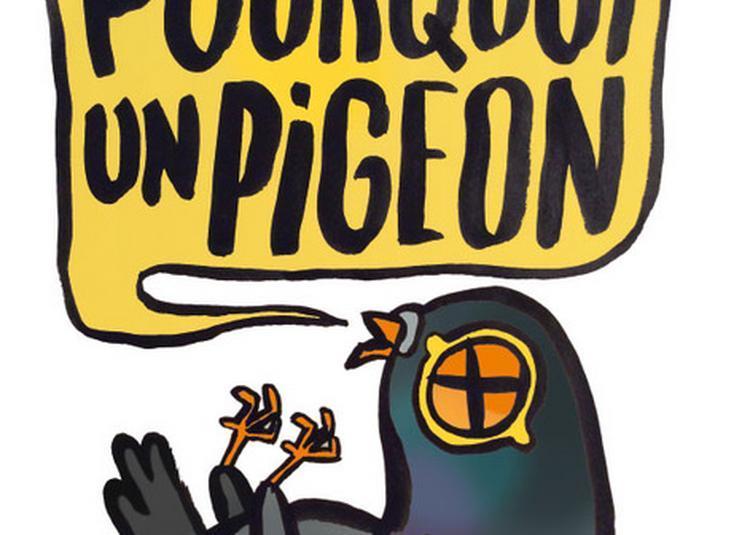 Pourquoi un Pigeon à Bordeaux