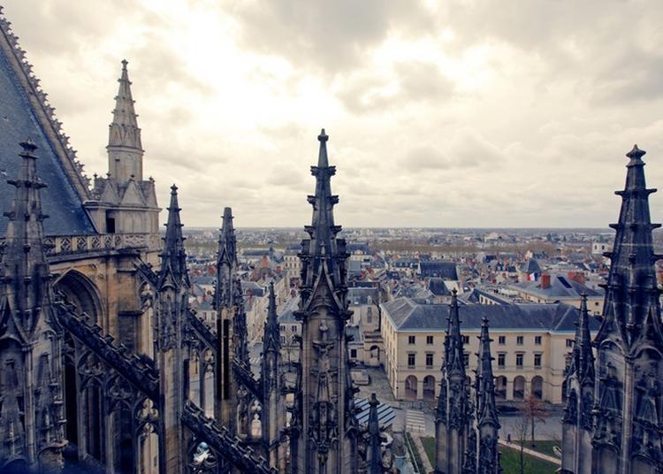Prenez De La Hauteur En Dominant La Ville Du Haut De La Cathédrale à Orléans