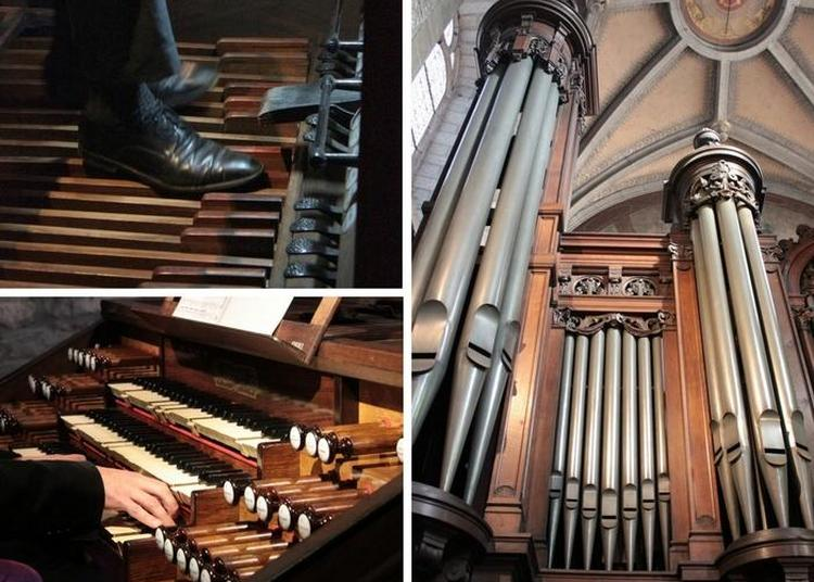 Présentation Concert - Orgue Cavaillé-coll De La Basilique De Sainte-anne-d'auray à Auray