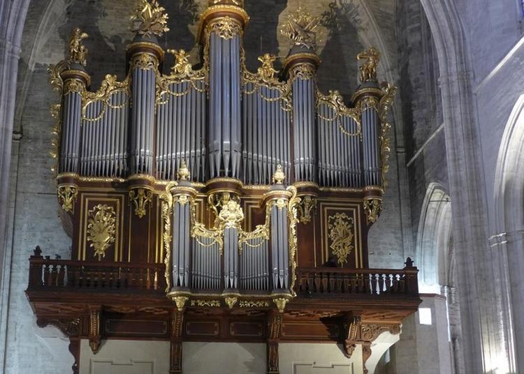 Présentation De L'orgue à Montpellier