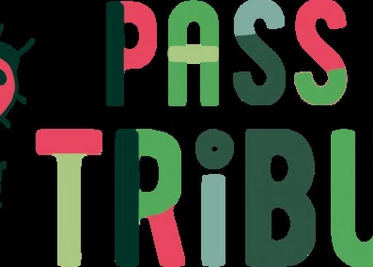 Présentation De La Saison Spéciale Pass Tribu à Echirolles