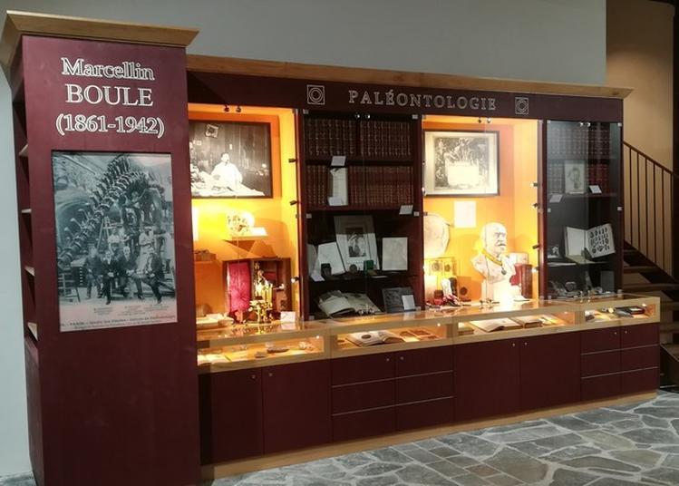 Présentation Du Cabinet De Curiosités Marcellin Boule à Montsalvy