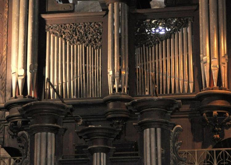Présentation Illustrée De L'orgue Dom Bédos à Castelnau Magnoac