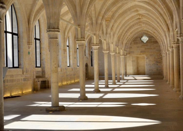 Projection 3d Interactive Le Collège Des Bernardins, D''hier À Aujourd'hui à Paris 5ème