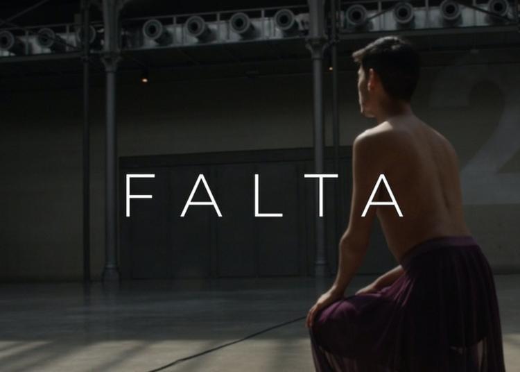 Projection De La Vidéodanse Falta, De Gustavo Gelmini, à L'ambassade Du Brésil à Paris 8ème