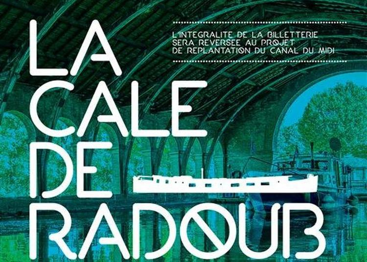 Projection En Plein Air De La Tortue Rouge à Toulouse