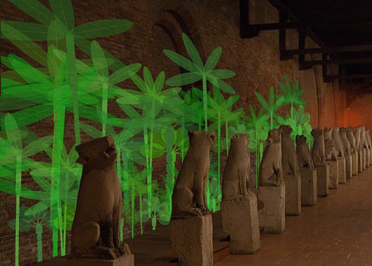 Projection Jardin Virtuel éphémère à Toulouse