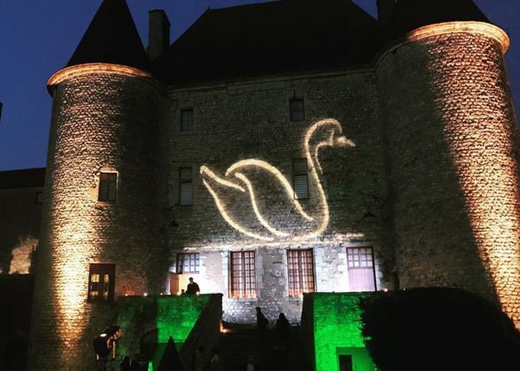 Projection Lumineuse Sur La Façade D'entrée Du Château à Nemours