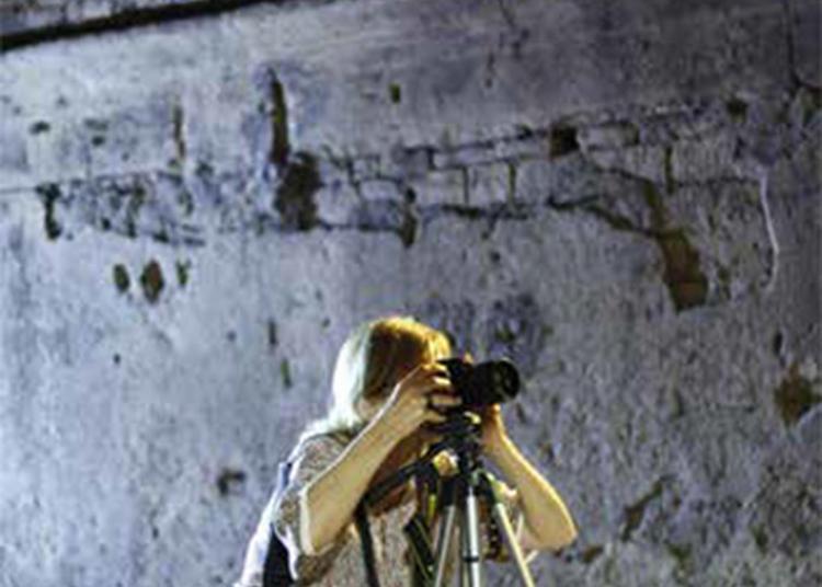 Projections Et Rencontres à Arles