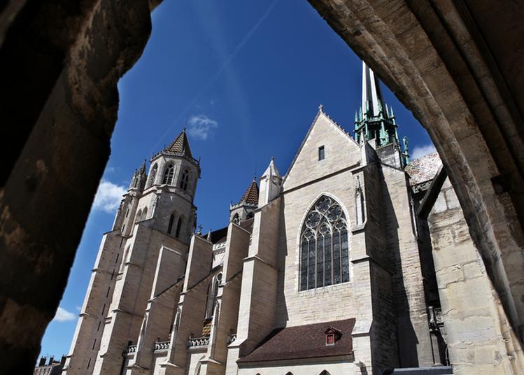 Projet Artistique Autour Des Restaurations De La Cathédrale Saint-bénigne à Dijon