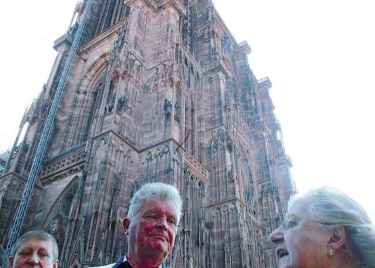 Promenade à Pied Autour De La Cathédrale à Strasbourg