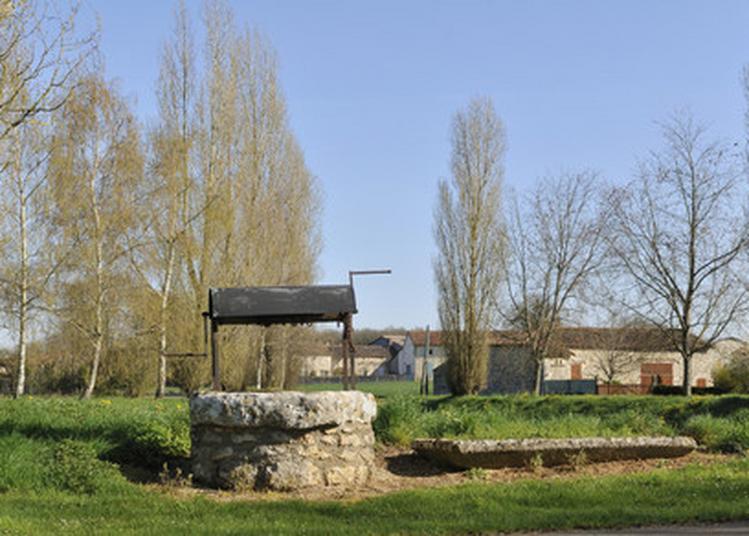 Promenade Commentée : Balade De Fours En Puits à Linazay