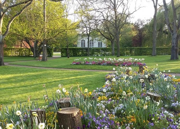 Sortir reims avec l 39 agenda culturel - Serre jardin castorama reims ...
