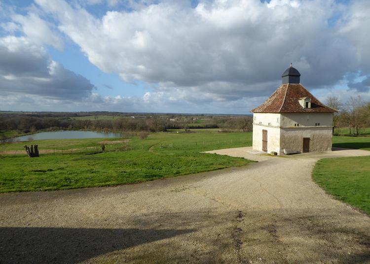Promenade-découverte Dans Le Bourg De Lureuil