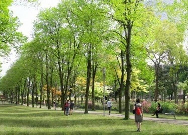 Promenade Urbaine :  De La Cité-jardin À L'éco-campus à Paris 14ème