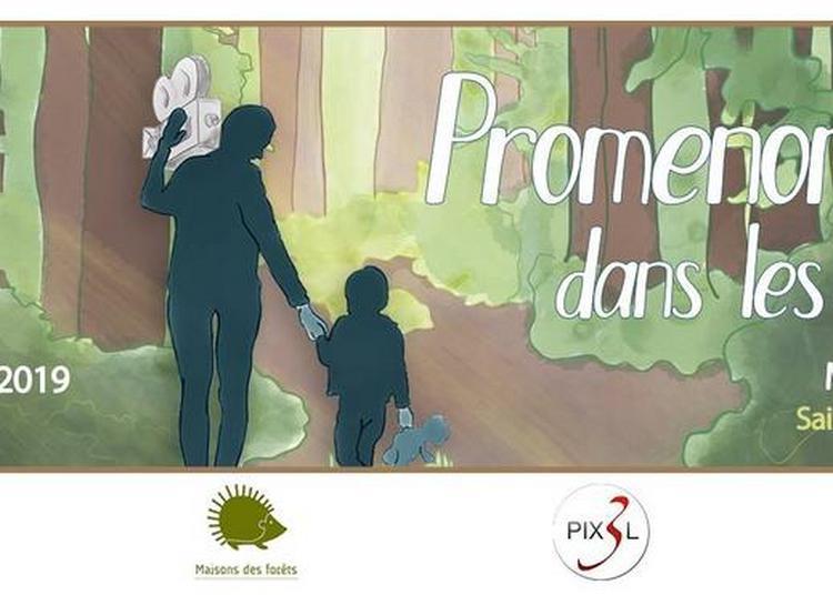 Promenons-nous dans les courts #19è festival du court-métrage à Saint Etienne du Rouvray