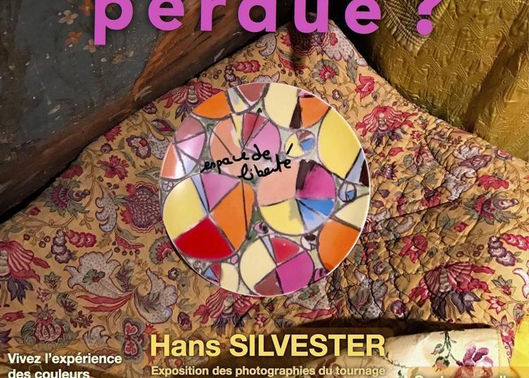 Provence Perdue? à Cavaillon