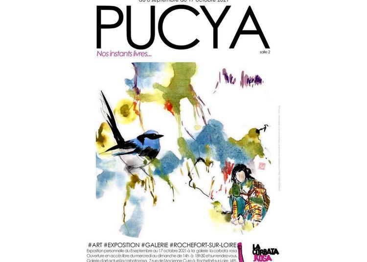 Pucya, nos instants livres à Angers