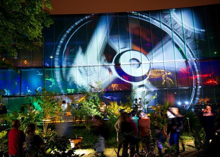 Quartier Libre Dans Le Quartier Des Sciences ! à Toulouse