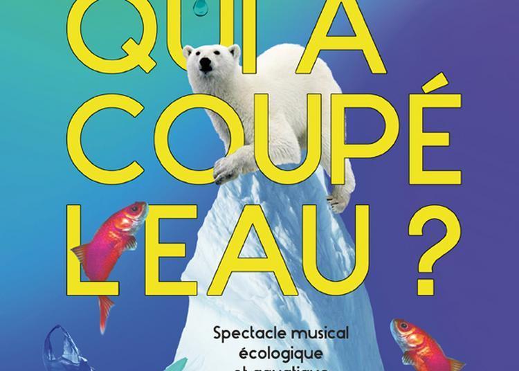 Qui A Coupe L'Eau ? à Paris 4ème