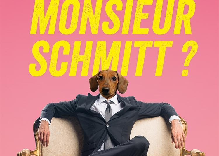 Qui est Monsieur Schmitt ? à La Chapelle Achard