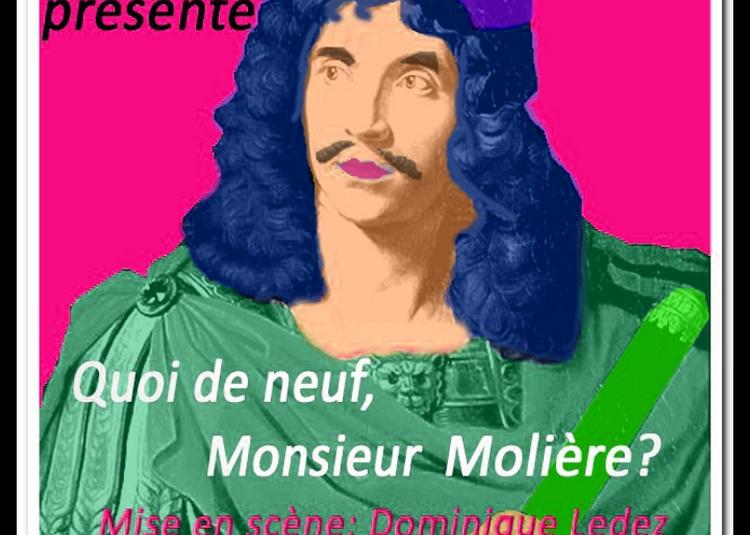 Quoi de neuf Monsieur Molière ? à Dinard