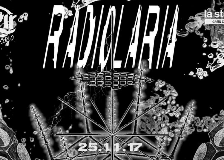 Radiolaria à Paris 18ème
