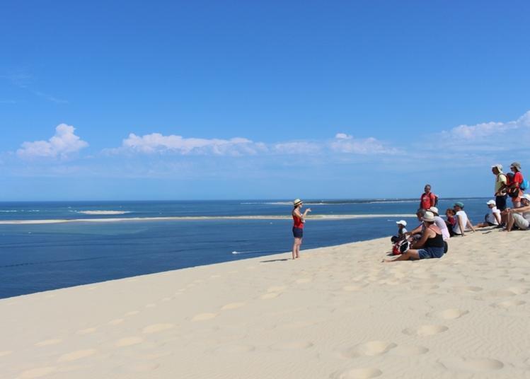 Randonnée Commentée : De La Dune Du Pilat Au Banc D'arguin à Pyla sur Mer