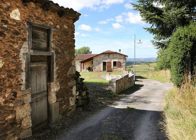 Randonnée Visite Sur Le Gr65 De Montredon à Saint-félix