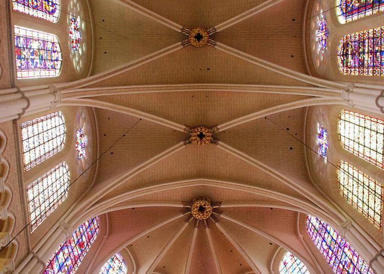 Redécouvrir Une Cathédrale De Lumière à Chartres