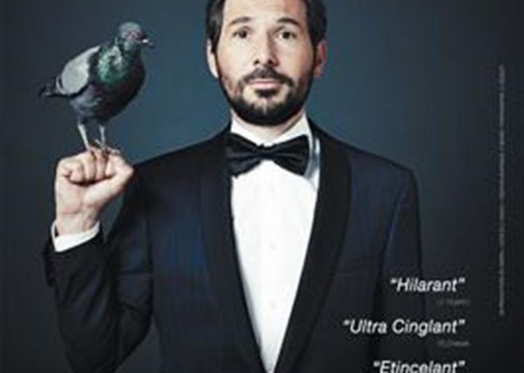 Régis Mailhot Dans Nouvelles Pigeonnades à Toulouse