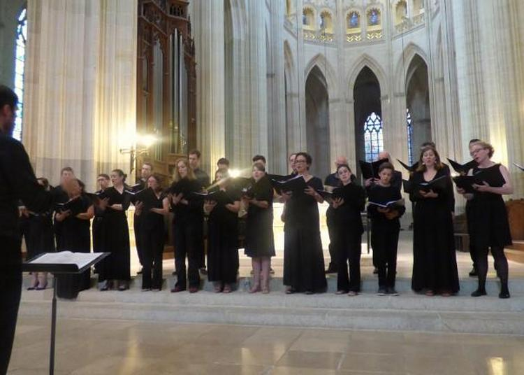 Requiem de Cavalli à Nantes