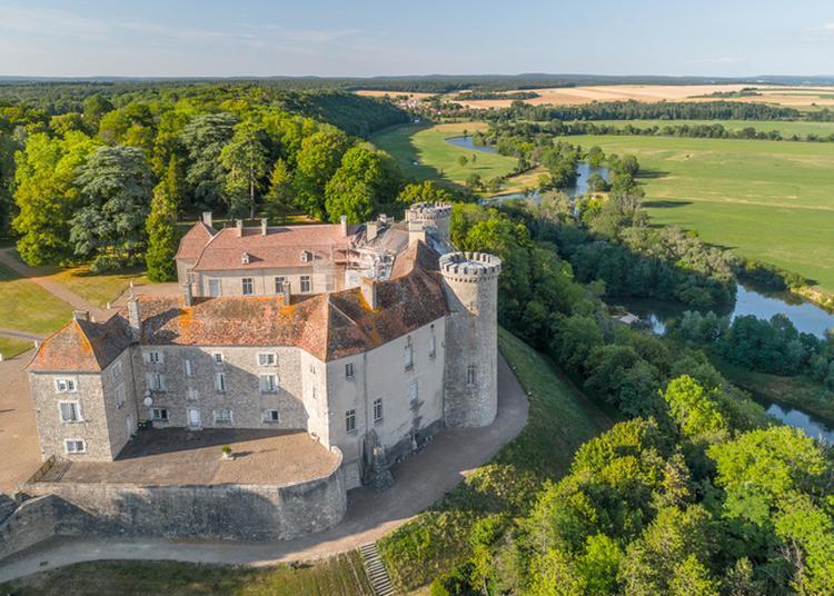 Restauration Du Château à Ray sur Saone