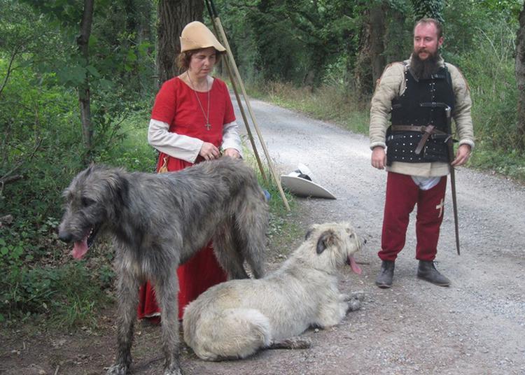 Retour Au Moyen-âge Sur La Colline Du Calvaire à Montbrison