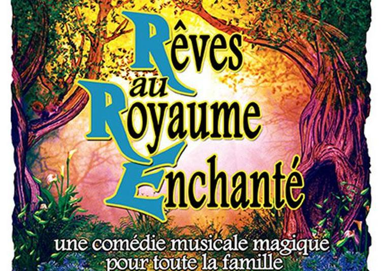 Reves Au Royaume Enchante à Avignon