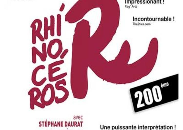 Rhinoceros à Paris 4ème