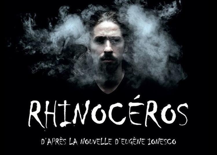 Rhinocéros à Nice