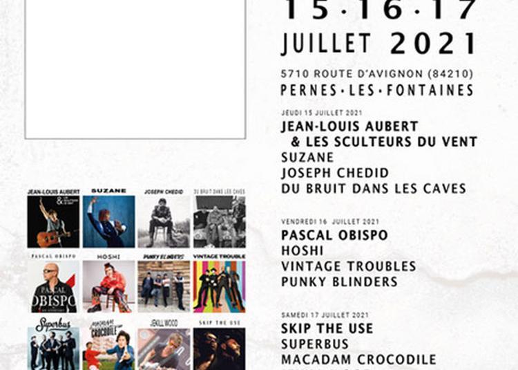 Rhinoferock Festival-Pass 3 Jours à Pernes les Fontaines
