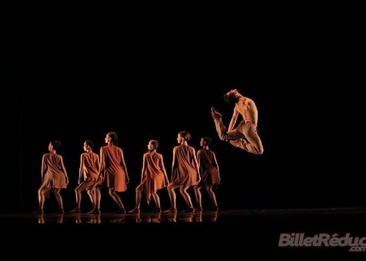 Sao Paulo Dance Company à Massy