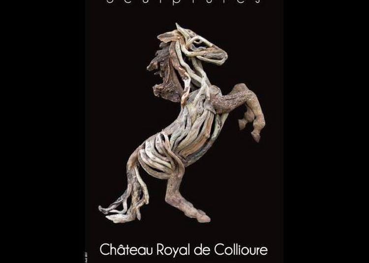 Sculptures en bois flotté de Laurent Llobet à Collioure