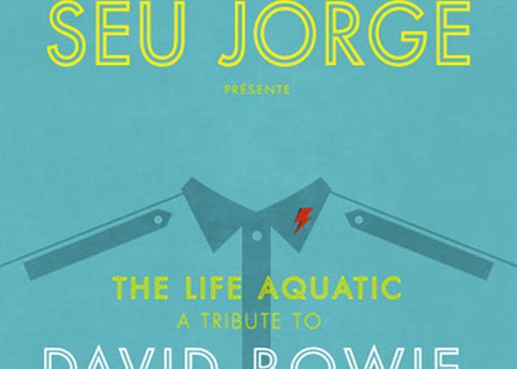 Seu Jorge - The Life Aquatic à Sete