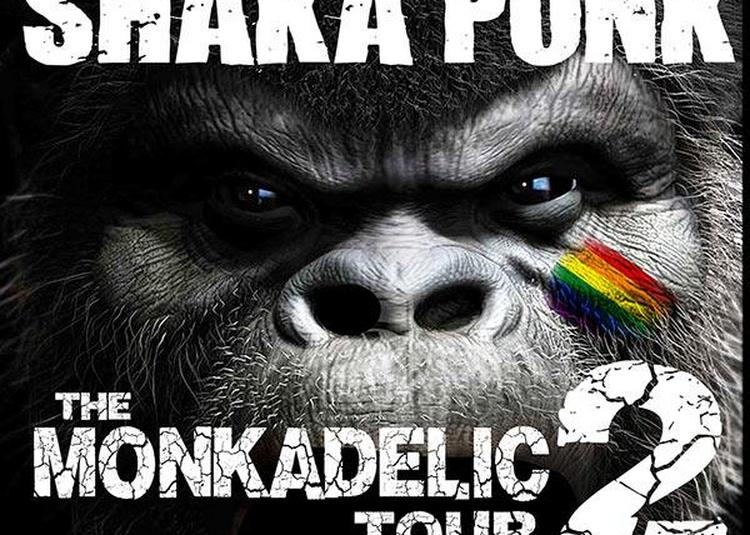 Shaka Ponk à Montlucon
