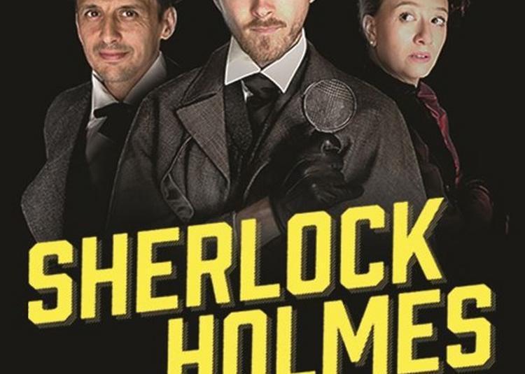 Sherlock Holmes Et Le Mystère De La Vallée De Boscombe à Paris 15ème