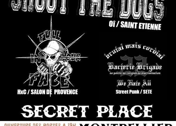 Shout The Dogs + Full In Your Face + Bacterie Brigade à Saint Jean de Vedas