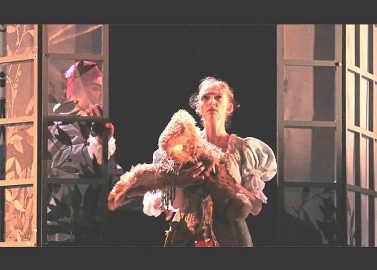 Si Peau d'Âne m'était conté - Danse baroque à Reims