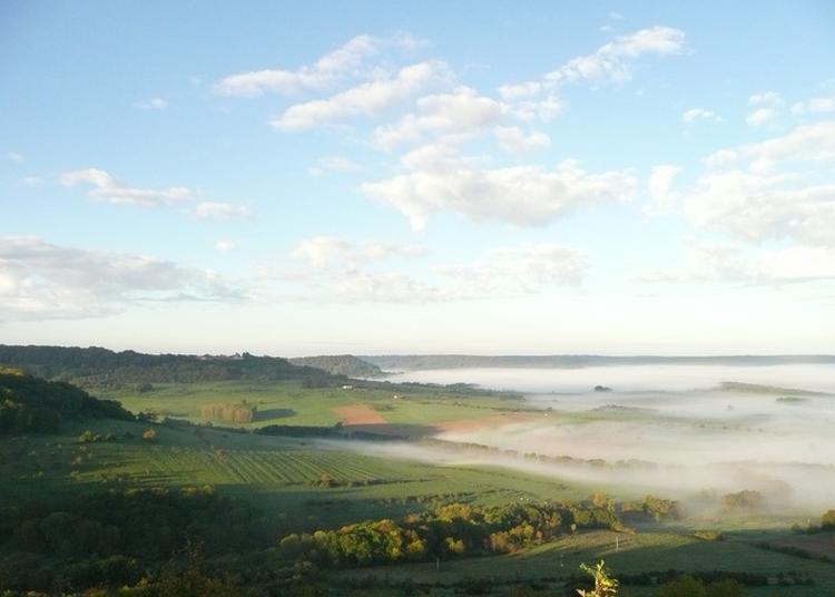Sion, Paysages D'hier Et D'aujourd'hui à Saxon Sion