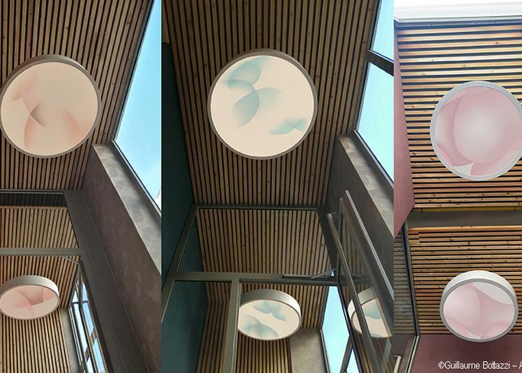 Six oeuvres rétroéclairées zénifiantes de Guillaume Bottazzi pendant les JEP à Lyon