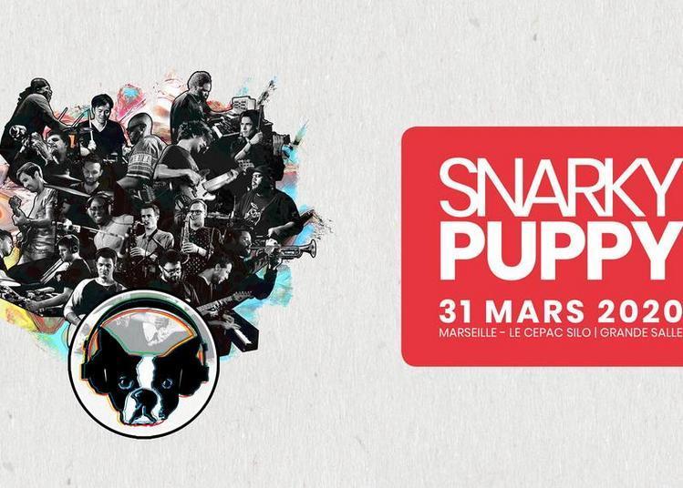 Snarky Puppy à Marseille